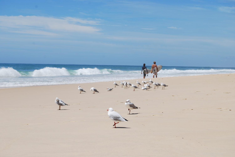 Australien Guldkusten
