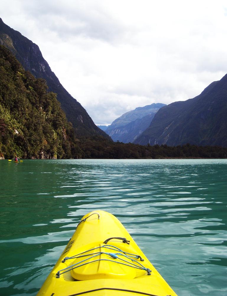 Kajak i Milford Sound