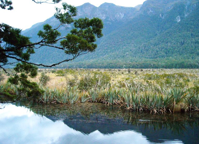 Mirror Lake Nya Zeeland