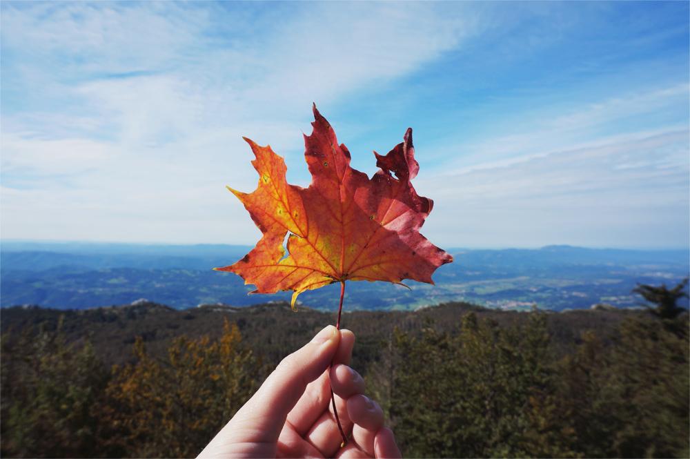 autumn_slovenia