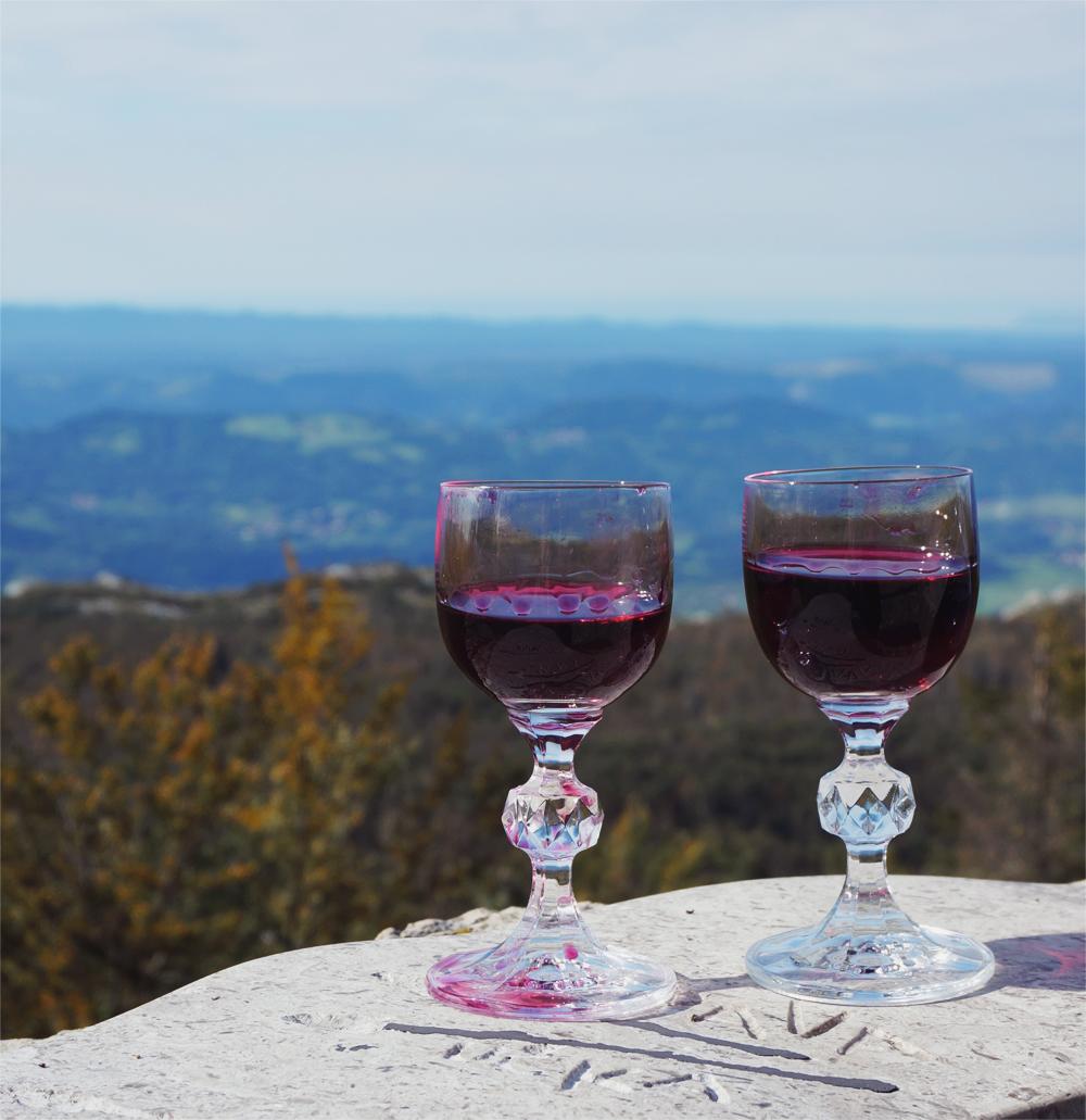 wine_picnic_slovenia
