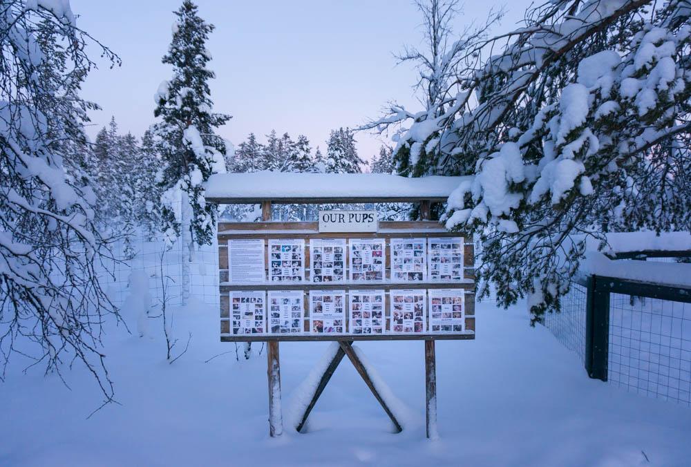 Finland_Lappland-106
