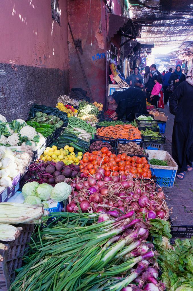 Marocko_Marrakech-19