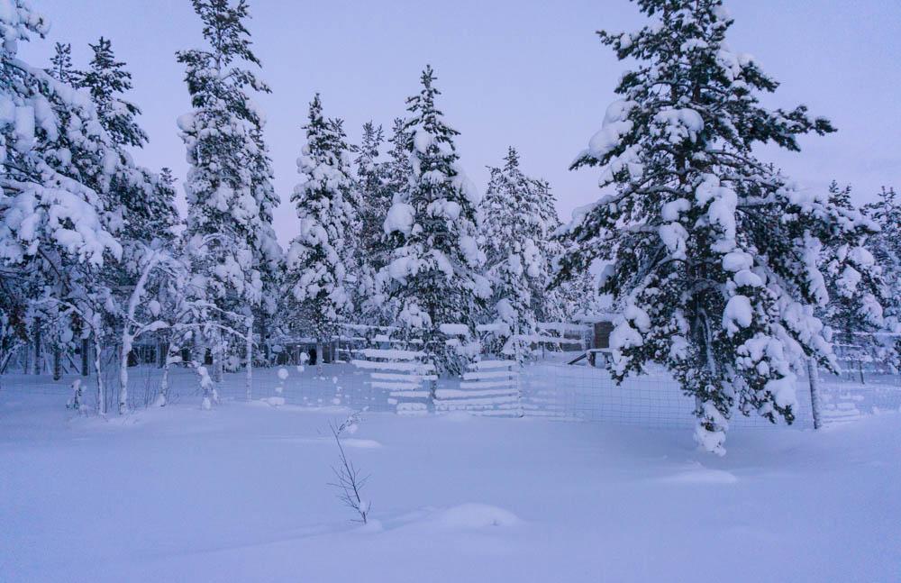 Finland_Lappland-24