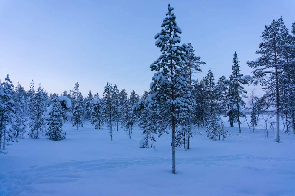 Finland_Lappland-29
