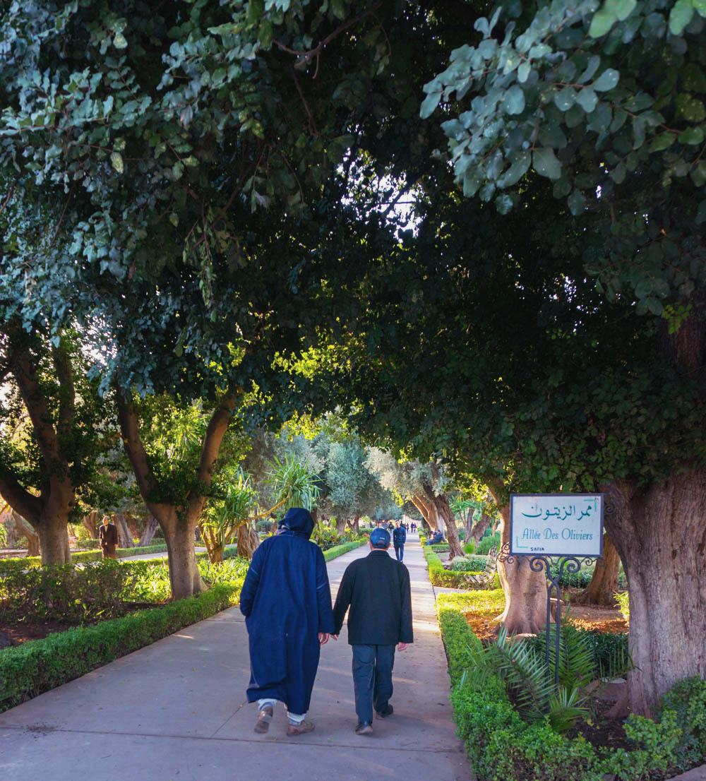 Marocko_Marrakech_garden-1