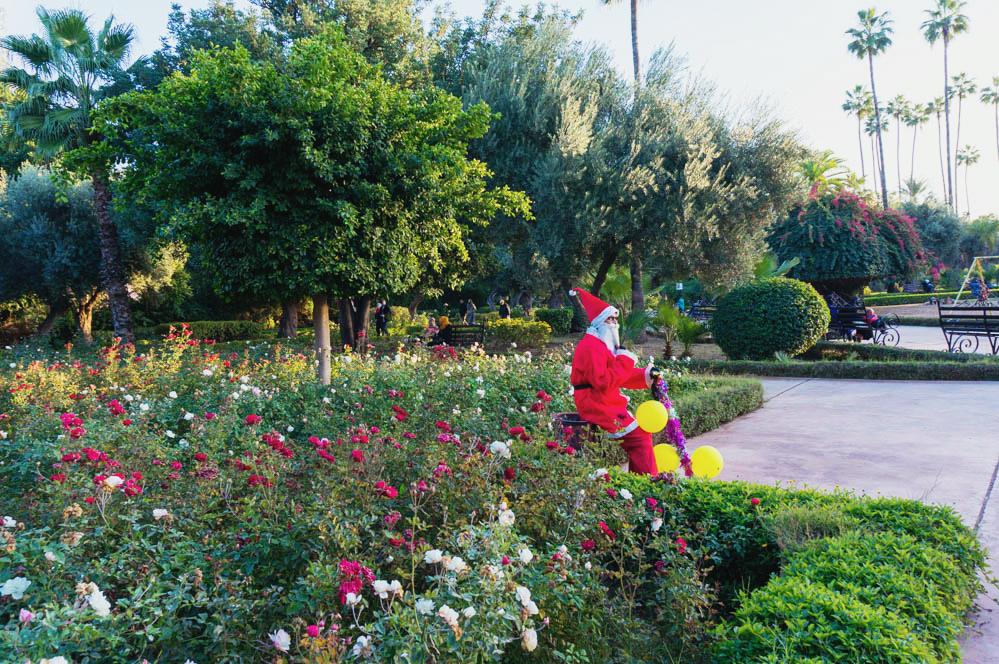 Marocko_Marrakech_garden-7