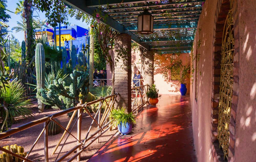 Marocko_Marrakech_majorelle-26_1