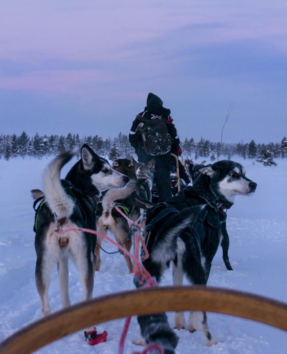 Finland_Lappland-141