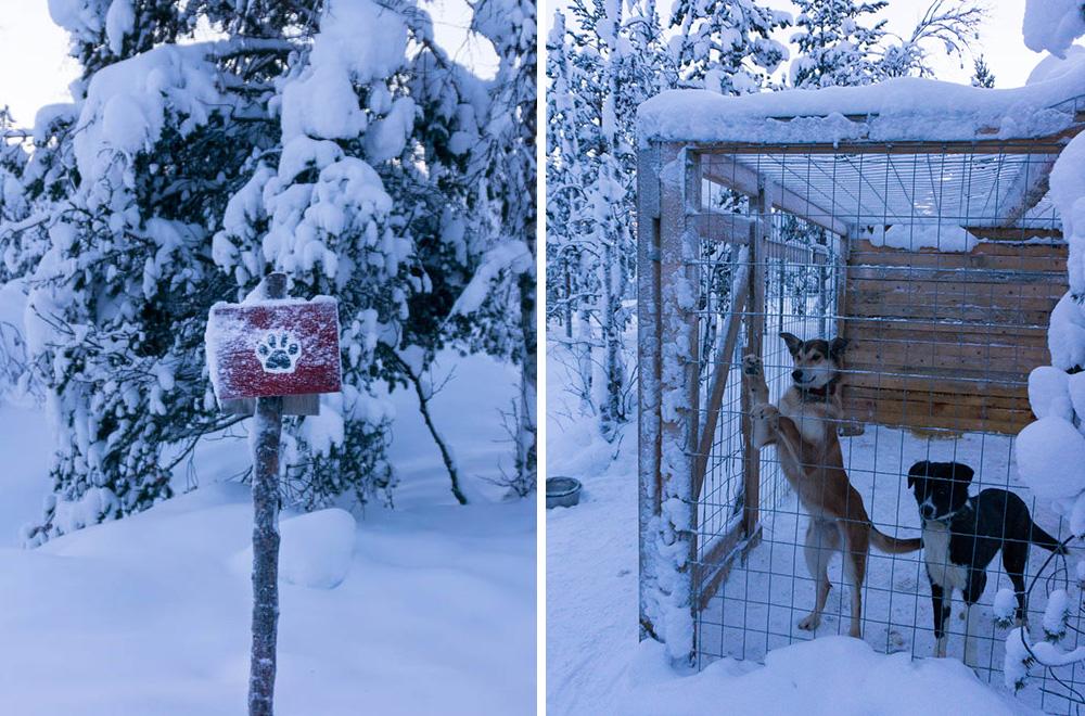 finska_lappland