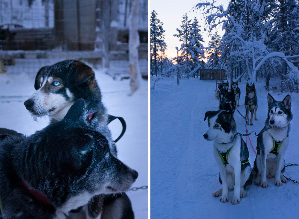 finska_lappland_2