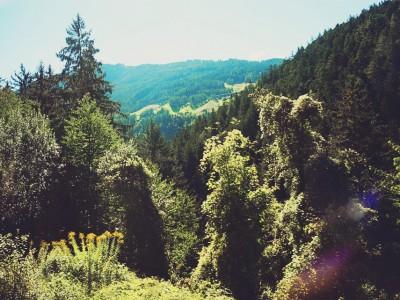 Vackra Tyrolen i Österrike