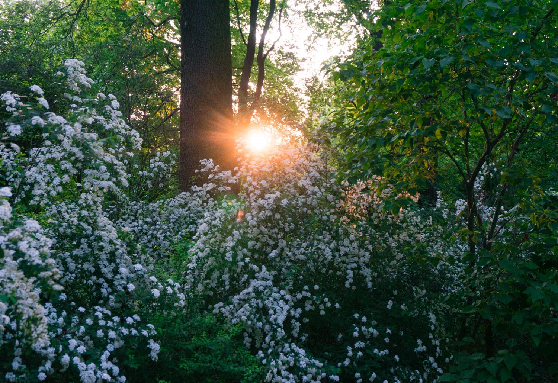 Weekend i Warszawa – 10 saker att göra
