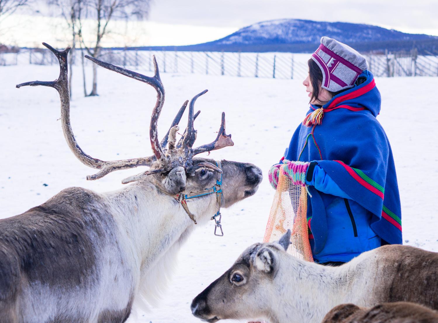 Nattåg till Kiruna och Abisko nationalpark