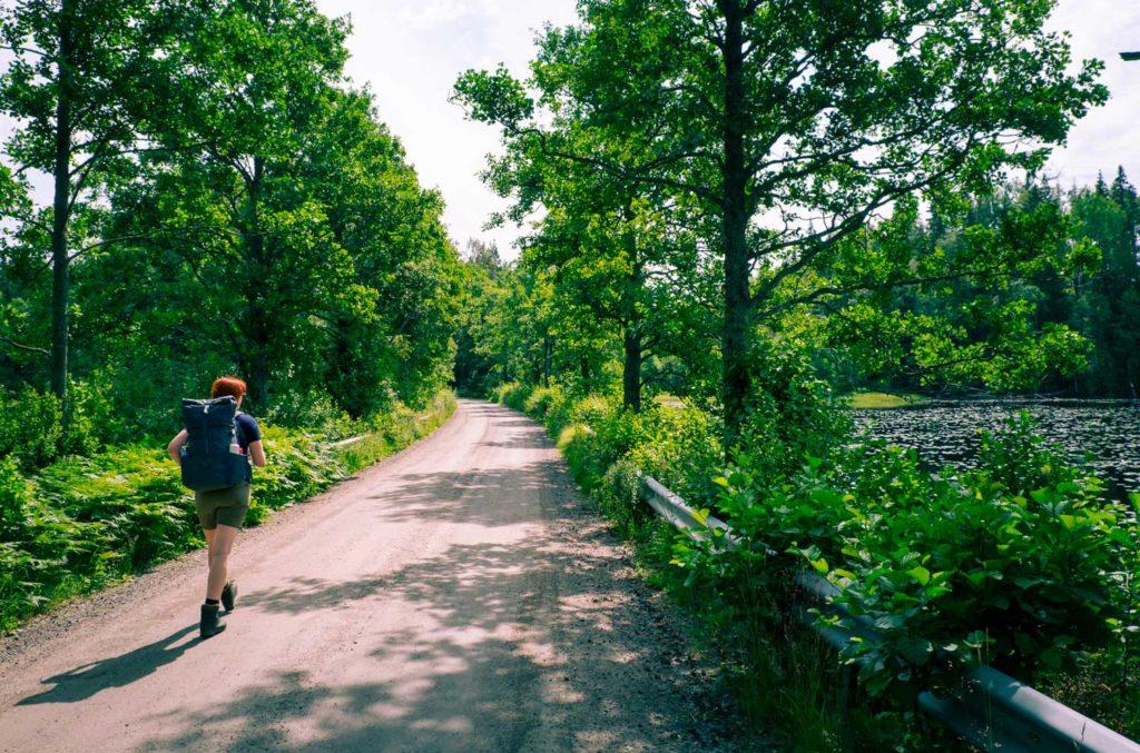 Vandring längs med Bergslagsleden i Tiveden