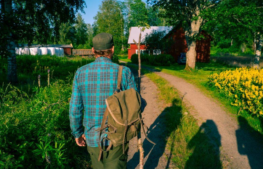 Vandring i Tiveden