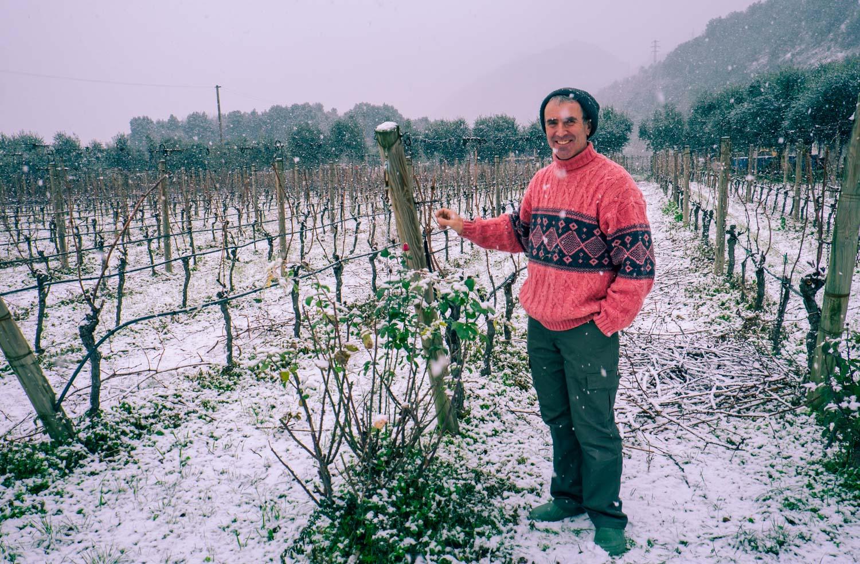 Utflykter att göra vid Gardasjön: åka till biodynamisk vingård