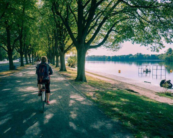 """Linden, """"limmern"""" och ljuv oktobersol – en dag på cykel genom Hannover"""