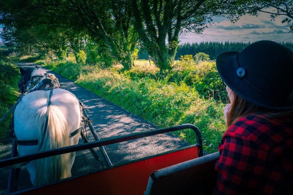 Med häst och vagn på Irland.