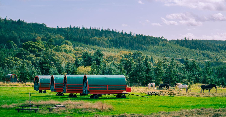 Häst och vagn på Irland