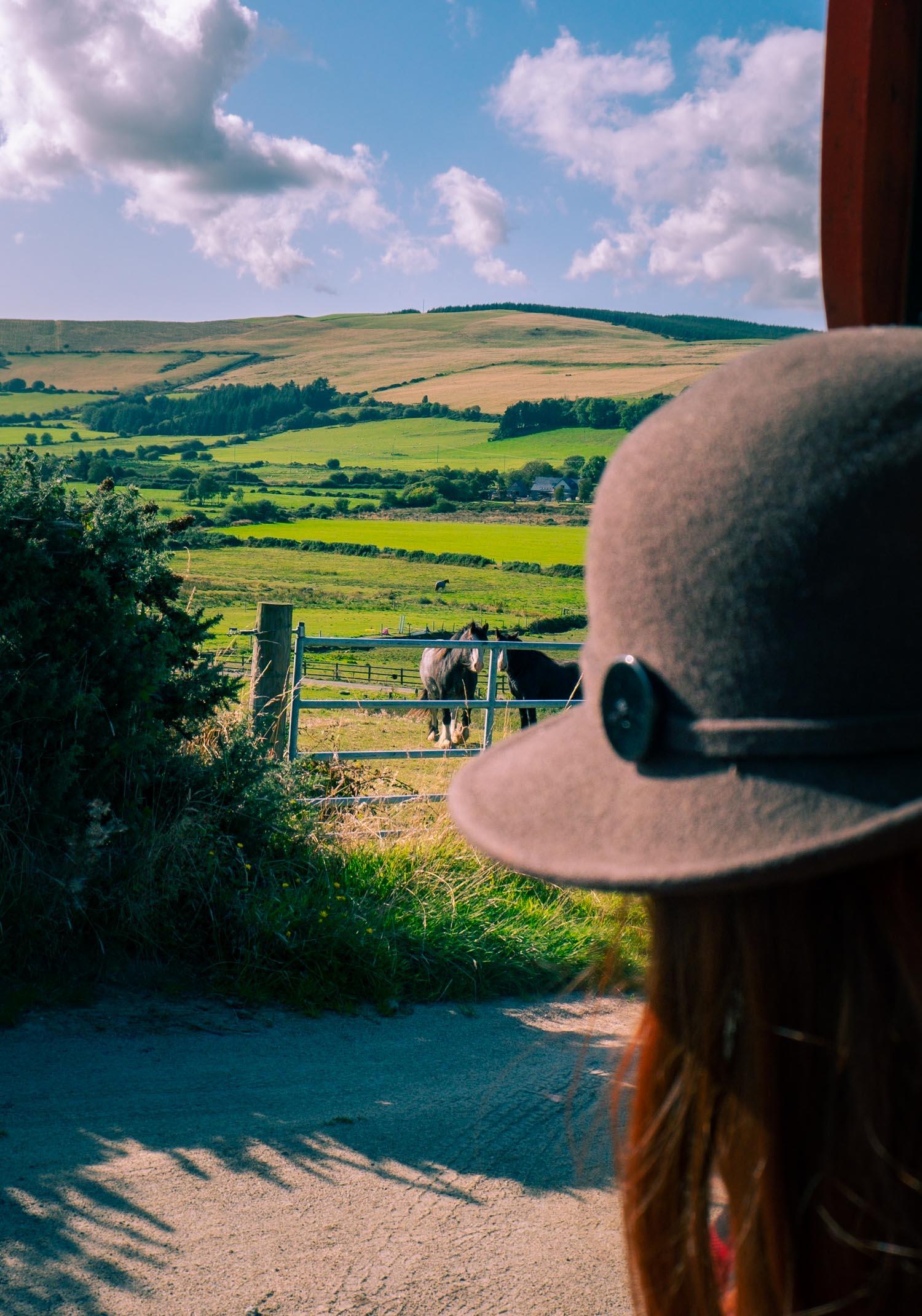 Utsikt från vår vagn på Irland
