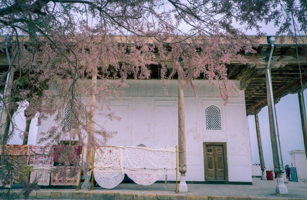 Ark i Buchara i Uzbekistan